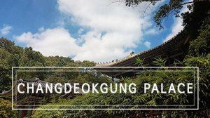 Seoul: The elegant Changdeokgung Palace – 창덕궁 and its secret garden!